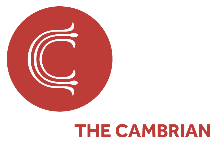 The Cambrian
